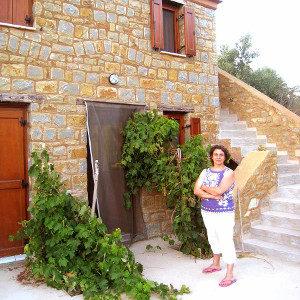 oliveraie des Trois Tortues, accueil